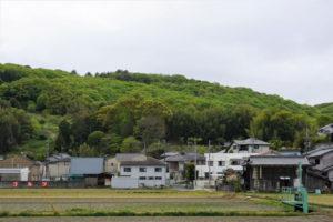 尾上八幡宮の森ー県道61号線よりー