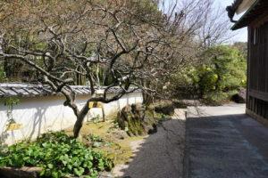 犬養木堂記念館 庭園-4