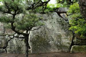 桝形見付け石垣の大石
